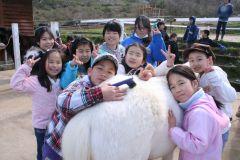 フカフカのポニーの背中を子ども達が寒い中を一生懸命手入れしています。