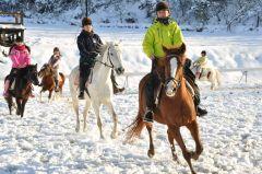 雪の中をみんなで協力して走る