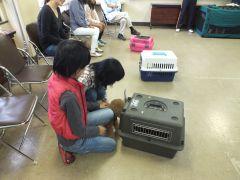 共生型防災まちづくり  ペットと一緒・防災レッスン親子教室の様子