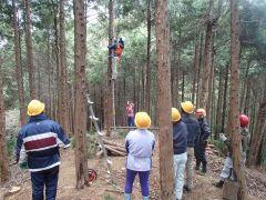 人工林の間伐、枝打ち体験