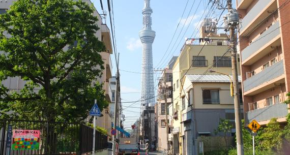 太平一丁目の町のあちこちから東京スカイツリーが間近に見えます。