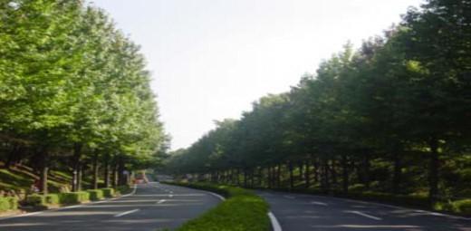 東京都の多摩地区南部に位置する多摩市。1970年代からニュータウン開発がされ、計画的なまちづくりがされている。